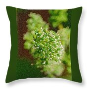 Sprouting Grapes Throw Pillow