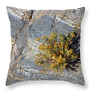 Sprouting Rock Throw Pillow