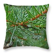 Spruce Drops Throw Pillow