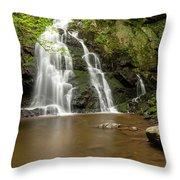 Spruce Flats Falls 1 A Throw Pillow