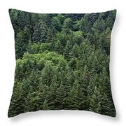 Spruce Forest Throw Pillow