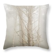 Spruce In The Fog Throw Pillow