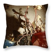 Spyglass Through Time Throw Pillow