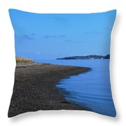 Squantum Shoreline Throw Pillow