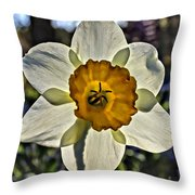 Square Daffydowndilly Throw Pillow