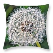 Square Dandelion 2 Throw Pillow