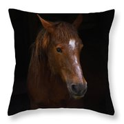Square Horse Portrait Throw Pillow