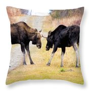 Squaring Off Throw Pillow