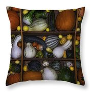 Squash And Gourds In Compartments Throw Pillow