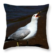 Squawk Throw Pillow by Amanda Struz