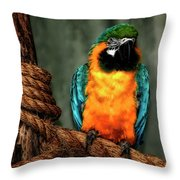 Squawk Throw Pillow