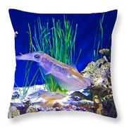Squid In Monterey Aquarium-california Throw Pillow
