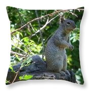 Squirel Throw Pillow