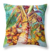 Squire's Coconuts Throw Pillow