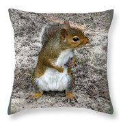 Squirrel 3 Throw Pillow