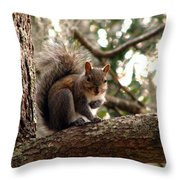 Squirrel 8 Throw Pillow