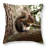 Squirrel 9 Throw Pillow