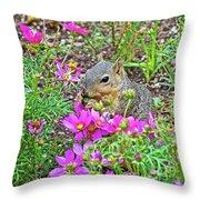 Squirrel Among Coreopsis In Huntington Gardens In San Marino-california   Throw Pillow