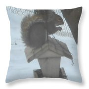 Squirrel Chilling Out Throw Pillow