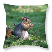 Squirrel Eating A Nut - Eugene Oregon Throw Pillow