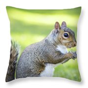Squirrel Eating Grapes Throw Pillow