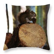 Squirrel Eating Pinecones Throw Pillow