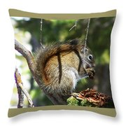 Squirrel Enjoys A Great Meal Throw Pillow