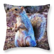 Squirrel - Id 16218-130716-8114 Throw Pillow