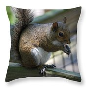 Squirrel II Throw Pillow