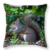 Squirrel IIi Throw Pillow