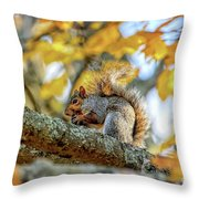 Squirrel In Autumn Throw Pillow
