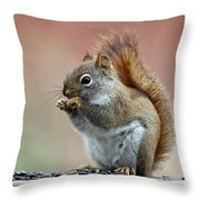 Squirrel In Fall Throw Pillow