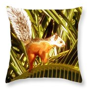 Squirrel In Palm Tree Throw Pillow