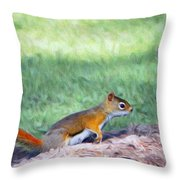 Squirrel In The Park Throw Pillow