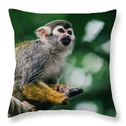 Squirrel Monkey Looking Up Throw Pillow