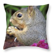 Squirrel - Morning Snack 02 Throw Pillow