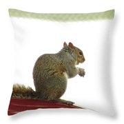 Squirrel On Car Throw Pillow