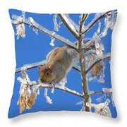 Squirrel On Icy Branches Throw Pillow