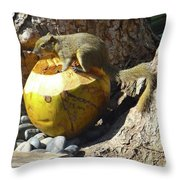 Squirrel On The Coconut Throw Pillow