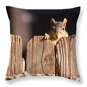 Squirrel On The Fence Throw Pillow