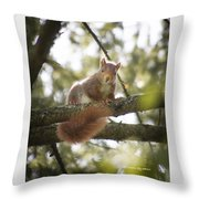 Squirrel On The Spot Throw Pillow