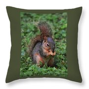 Squirrel Portrait # 3 Throw Pillow