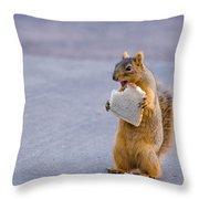 Squirrel Sandwich Throw Pillow