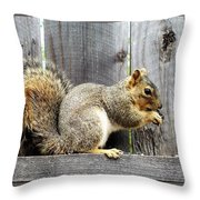 Squirrel - Snack Time Throw Pillow