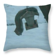 Squirrel Upside Down  Eating Throw Pillow