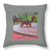 Squirrel Visits Me Throw Pillow