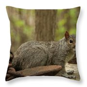 Squirrel With Anchor Throw Pillow