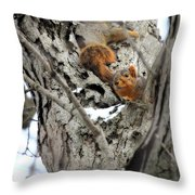 Squirrels At Play Throw Pillow