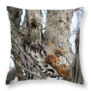 Squirrels At Play Vertically Throw Pillow