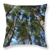 Squirrels Highway  Throw Pillow